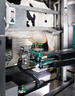 Photo of the robotic armon an MIone applying the milking unit
